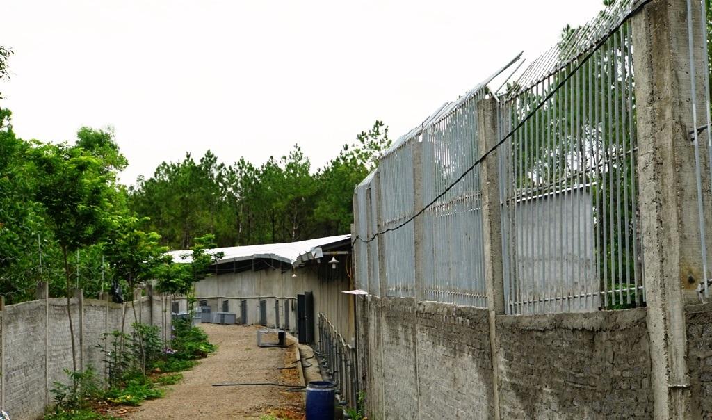 Chuồng trại tại Khu sinh thái Hòn Nhạn xây tường cao, rào chắn thép.