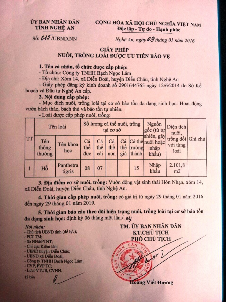 Giấy phép của UBND tỉnh Nghệ An.