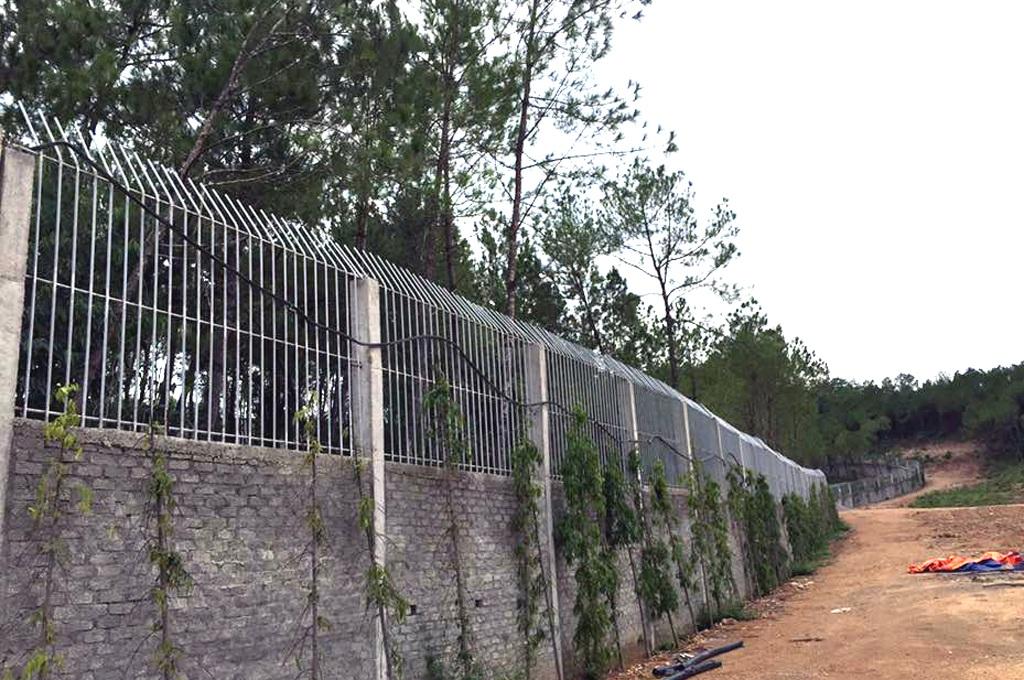 Lùm xum vụ cấp phép cho doanh nghiệp nuôi hổ tại Nghệ An - 10