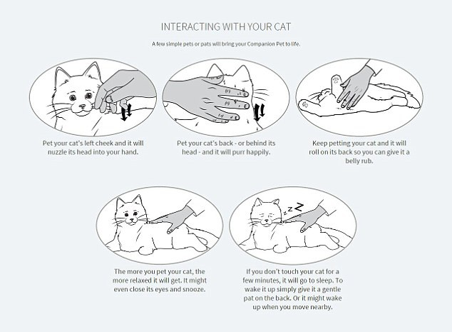 Bảng hướng dẫn sử dụng robot mèo