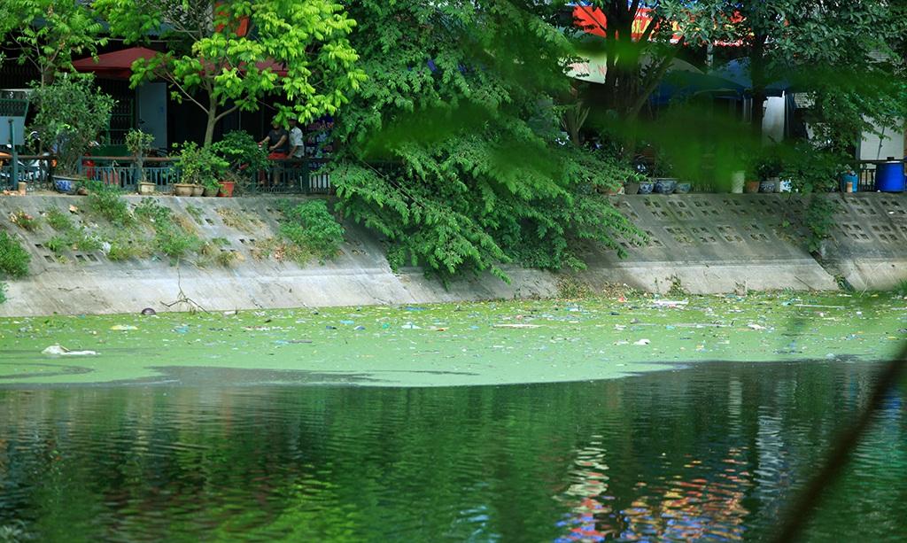Đa phần rác ở hồ Văn Chương đều là rác thải sinh hoạt.