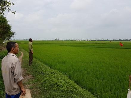 Mập mờ dự án bán 30ha đất nông nghiệp cho doanh nghiệp Trung Quốc.