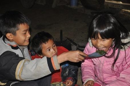 Hàng ngày ăn rau rừng để sống, các em vẫn vui vẻ.