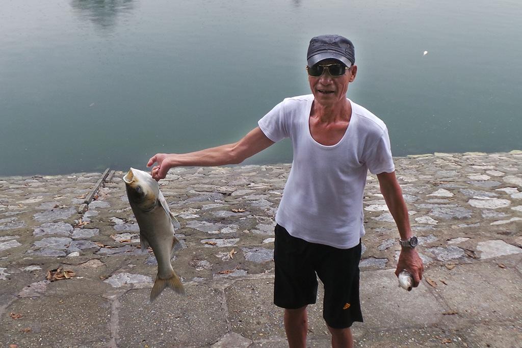 Khoảng 5 tấn cá đã chết ở hồ Hoàng Cầu (quận Đống Đa, Hà Nội) sau cơn mưa nhỏ đêm 7/6 (Ảnh: Mạnh Thắng)