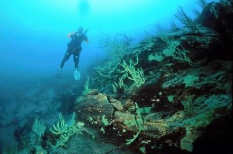 Khách du lịch lặn xuống dưới Hồ khám phá hệ động thực vật ở đây