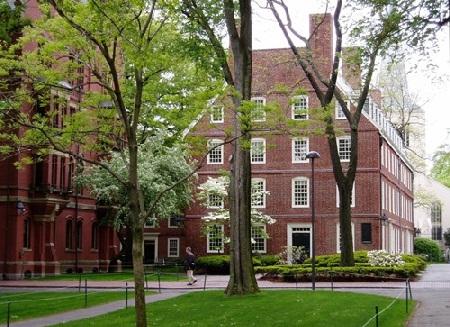 Học ở Harvard có khó?