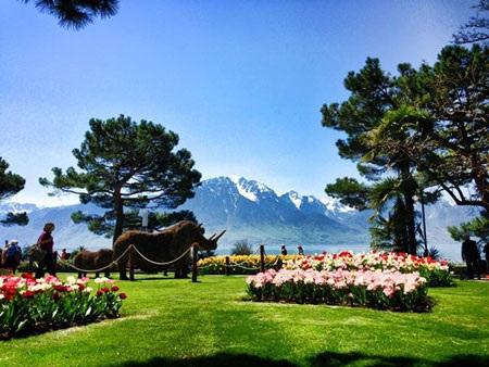 Hồ Geneva, 2 phút đi bộ từ trường HIM