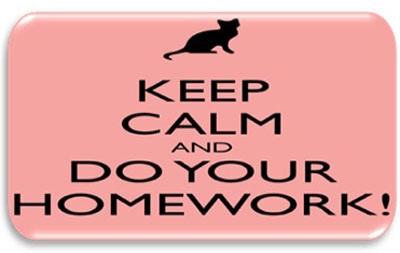 Nhưng mà bài tập về nhà quan trọng thế sao?