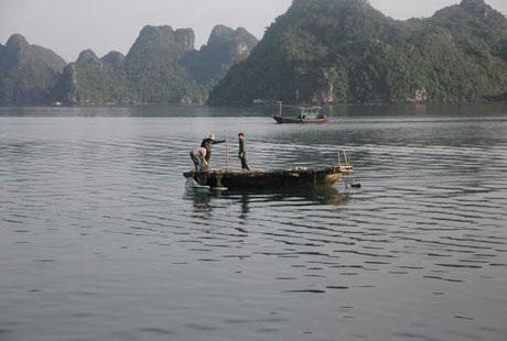 Vẻ đẹp hoang sơ đầy thơ mộng của Cô Tô luôn thu hút đông đảo khách du lịch. (ảnh internet)