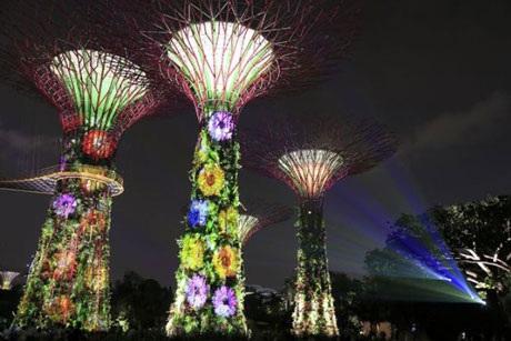Vườn cách mạng ở Singapore lộng lẫy trong lễ kỷ niệm năm đầu tiên
