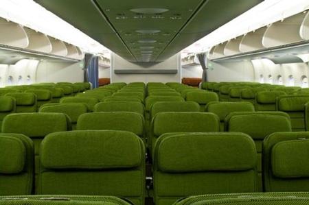 Trong khoang máy bay cũng phủ đầy một màu xanh rêu