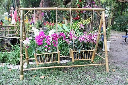 Những chậu hoa kiểng được chăm sóc kỳ công