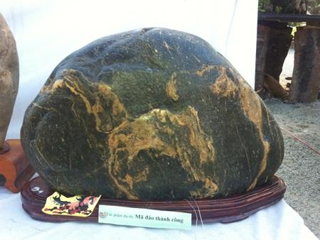 Viên đá kỳ lạ có hình 'Mã đáo thành công'.