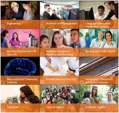 Thông tin về tất cả các ngành học sẽ được giới thiệu tại Triển lãm
