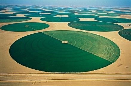 Những vùng đất canh tác của nông trại