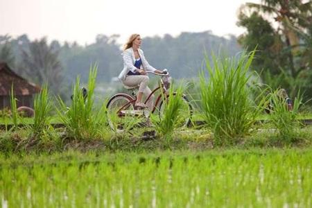 Khung cảnh xinh đẹp tại Bali trong bộ phim Ăn, cầu nguyện, yêu