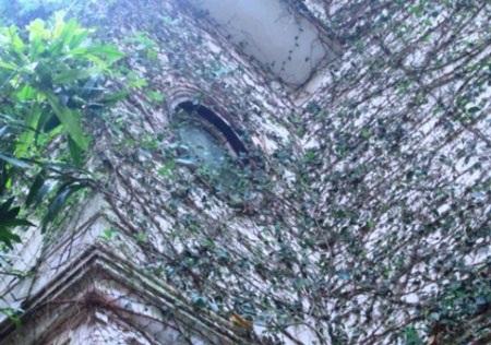 Biệt thự phủ kín dây leo kỳ bí ở Hà Nội