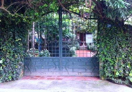 Từ ngoài vào, cổng cũng được bao bởi những loại dây leo khác nhau