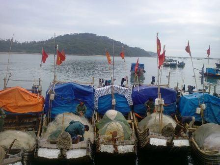 Những chiếc bè nhỏ ngư dân dùng đi đánh bắt sứa