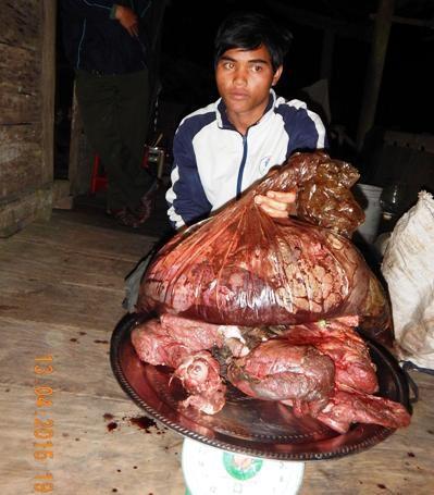 Đối tượng Đinh Khang cùng tang vật bị bắt giữ tại cơ quan chức năng (Ảnh: Kiểm lâm cung cấp)