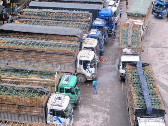 Sau nhiều năm, vấn nạn ùn tắc tại các cửa khẩu tại Lạng Sơn vẫn chưa được giải quyết