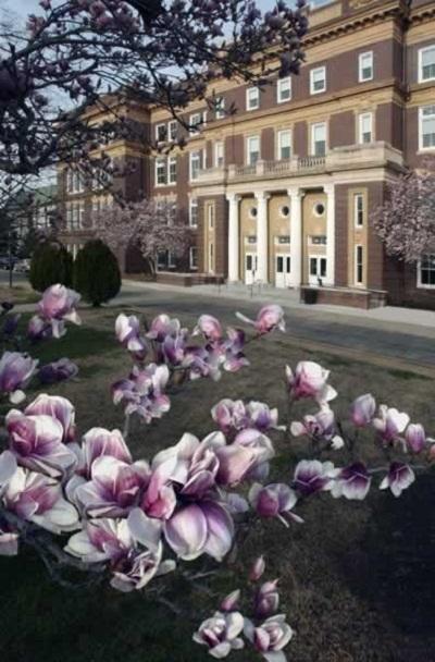 - Có hơn 100 ngành đào tạo Cao đẳng, Đại học, Thạc sĩ mọi chuyên ngành