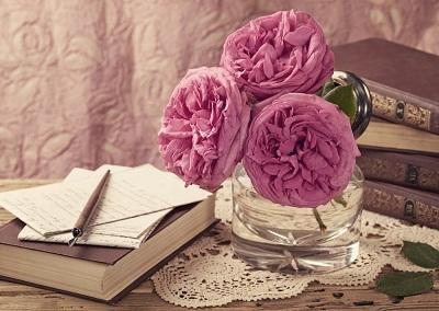 Ngày hoa hồng: Vẫn tin ở hoa hồng!
