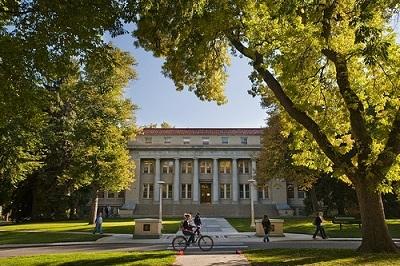 Học bổng hấp dẫn đại học danh tiếng Hoa Kỳ - 3