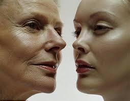 Nấm Linh Chi giúp làm chậm hóa trình lão hóa