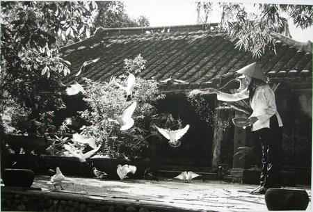 Đà Nẵng: Danh thắng và tiềm năng du lịch qua cuộc thi ảnh - 3
