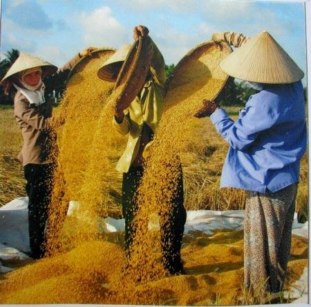 Đà Nẵng: Danh thắng và tiềm năng du lịch qua cuộc thi ảnh - 19