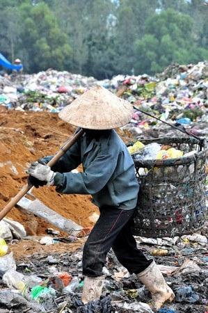 Một buổi thu hoạch ở bãi rác