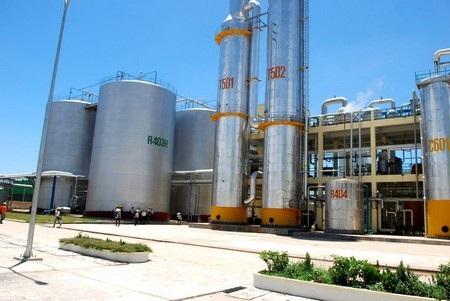 Nếu không tìm ra giải pháp thích hợp thì nhà máy cồn đầu tiên của VN có khả năng phá sản