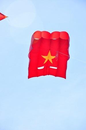 Chú diều hình cờ Tổ quốc