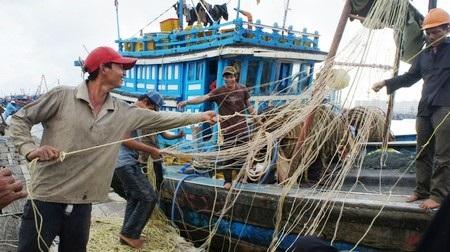 Ngư dân các tỉnh đã lên bờ an toàn