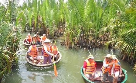 Mỗi ngày hàng trăm du khách tham quan khu rừng dừa nước này