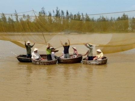 Sau khi kéo rớ lên là công việc thu hoạch cá