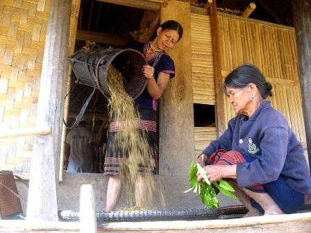 Phụ nữ ở vùng cao Tây Giang, Quảng Nam cùng giúp nhau xóa đói, giảm nghèo