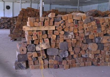 Lô gỗ đang bị tạm giữ để điều tra