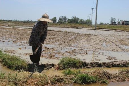 Theo ông Sồ, trong vòng 10 năm qua chưa bao giờ xảy ra tình trạng khô hạn kéo dài như bây giờ