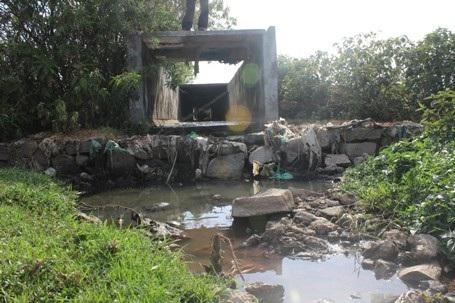 Nước thải từ nhà máy Hồng Đức Vượng chảy thẳng ra môi trường gây ô nhiễm