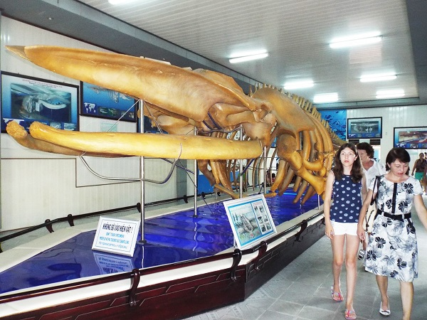 Du khách tham quan Bảo tàng Hải dương học Nha Trang - Ảnh: Viết Hả