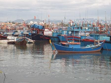 Các tàu thuyền ở Nha Trang đang trú tránh bão số 4 tại cảng Hòn Rớ, Nha Trang chiều 29/11.