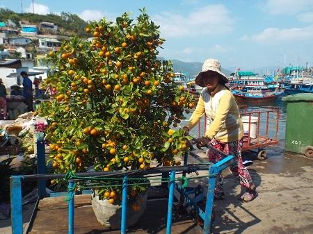 Dân đảo Trí Nguyên chở Tết về nhà.