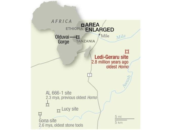 Đoàn nghiên cứu tìm kiếm hóa thạch trong khu vực trong sa mạc Afar, Ethiopia.