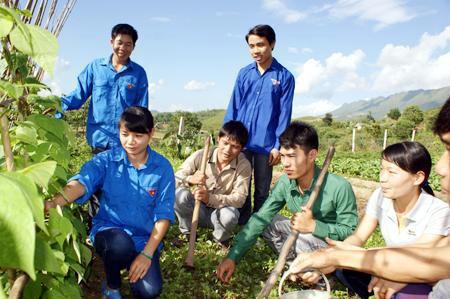 Thế hệ trẻ đang góp sức thay đổi kinh tế - xã hội nhiều vùng nông thôn, miền núi (Ảnh minh họa)