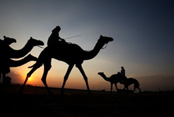Dubai – Nơi hiện đại hội ngộ với truyền thống
