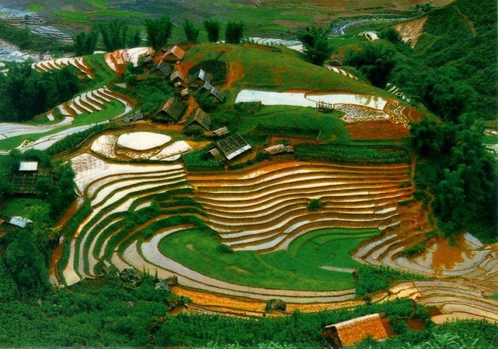 Việt Nam có kết quả 94.56%
