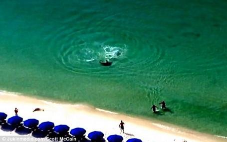 Nhận thấy điều chẳng lành, hai du khách đã chạy nhanh vào bờ và may mắn thoát chết