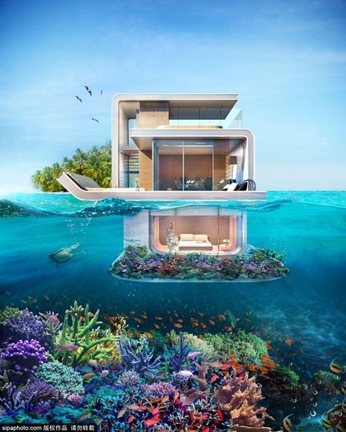 Tầng 1 biệt thự nằm hoàn toàn dưới biển. Xung quanh là những rặng san hô nhân tạo